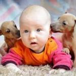 Животные в доме с малышом